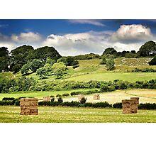 Hay-henge Photographic Print