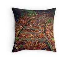 Stepping down... Throw Pillow