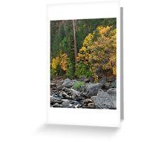Yosemite Autumn Greeting Card