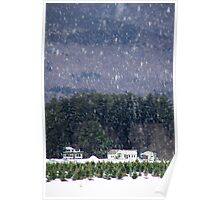 Maine Woods in Winter Poster