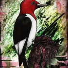 Ruby the Red-Headed Woodpecker by Studio8107