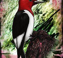 Ruby the Red-Headed Woodpecker by Studio8107