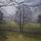 Moment of splendour by Maria Ismanah Schulze-Vorberg