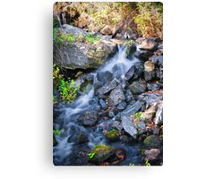 The waterfall experience Canvas Print