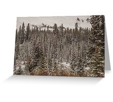 Winter's Come Early Greeting Card