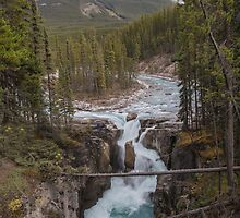 Athabasca Falls by Ron Finkel