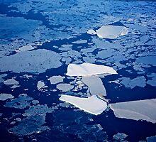 Antarctic ice blocks by joeferma