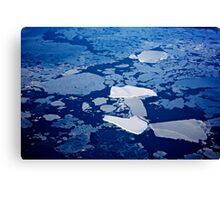 Antarctic ice blocks Canvas Print
