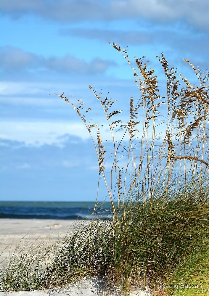 Peering Beyond The Dunes by Kathy Baccari