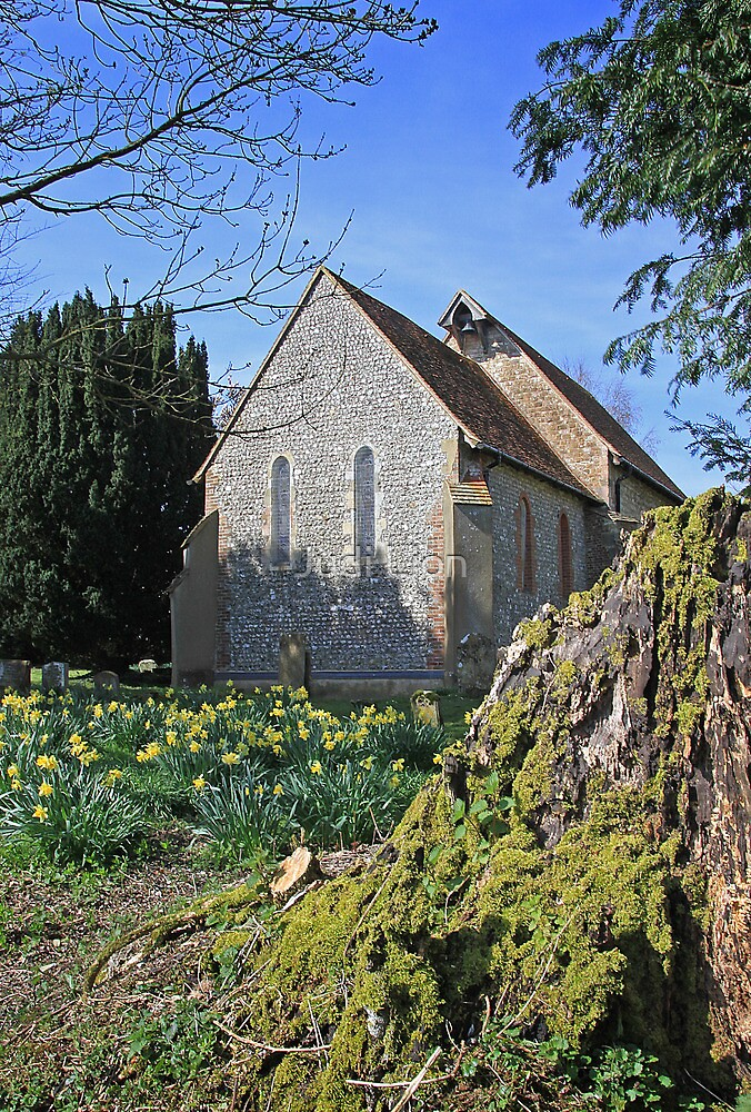 St Paul, Elsted in spring by Judi Lion