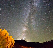 Autumn Milky Way Night Sky  by Bo Insogna