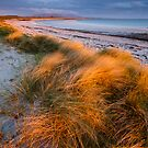 Last Rays, Benbecula by Justin Foulkes