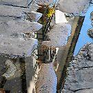 Cordoba Reflection by Sue Ballyn