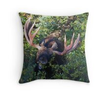 Face to Face Throw Pillow