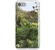 Slow Day in the Hotel Tropics iPhone Case/Skin