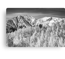 Colorado Rocky Mountain Autumn Magic Black and White Canvas Print