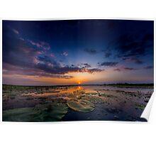 Danube Delta at sunset Poster