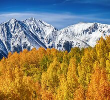 Colorado Rocky Mountain Autumn Magic by Bo Insogna