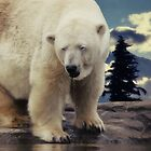 Polar Bear  by AD-DESIGN