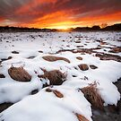 Fire and Ice by Bob Larson
