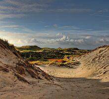 Low sun over the dunes by © Kira Bodensted