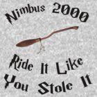 Harry Potter - Nimbus 2000 by appfoto