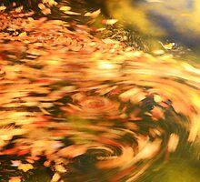 Autumn Swirl by Roupen  Baker
