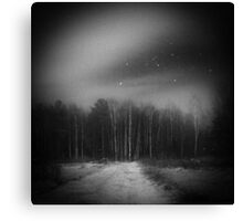 mysterious forest Canvas Print