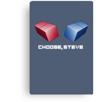 Choose, Steve Canvas Print