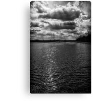 Dynamic Storm Over the Marsh Canvas Print