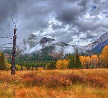Sawback Fall by JamesA1