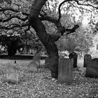 Graveyard Shift by K.J. Summerfield