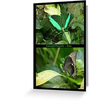 Emerald Peacock~ Collage Greeting Card