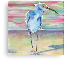 Sea Bird Canvas Print
