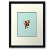 Light Blue Puppy Framed Print