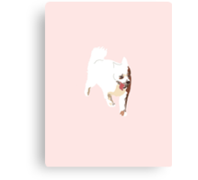 Baby Pink Pup Canvas Print