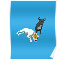 Bright Blue Puppies Poster