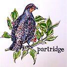 Partridge. ('A partridge in a pear tree')  by Elizabeth Moore Golding