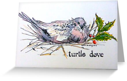Turtle dove. ('Two turtle doves...'). The Twelve days of Christmas. by Elizabeth Moore Golding