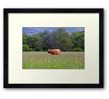 Spring In The Highlands Framed Print