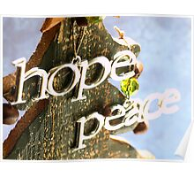 Hope & Peace Poster