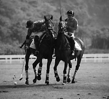 Polo - The Challange by Mark Bolton