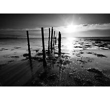 Sticks, stones, shadows and bones. Photographic Print