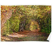 Secret Garden Path Poster