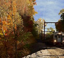 Commuter in Autumn by Kenneth Hoffman