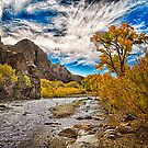 Wilson Canyon by homendn