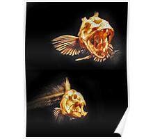 Monterey Bay Aquarium Poster