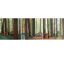 Embroidered Forest, mixed media and zentangles Photographic Print