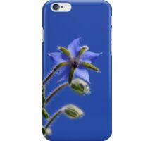 Back End of Summer iPhone Case/Skin