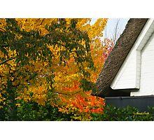 Autumn Cottage - Edegem - Belgium Photographic Print